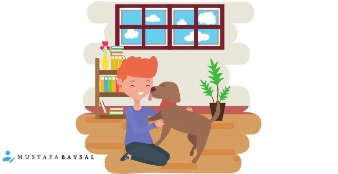 apartmanda köpek beslemek yasak mı?